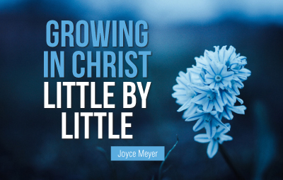 Growing in Christ Little By Little